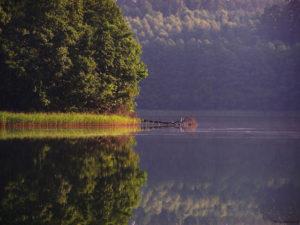 Binduga - miejsca spławu drzewa