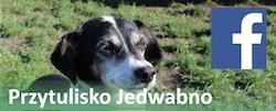 FB Jedwabno