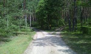 Rozjazd za skrzyżowaniem z Omulewką. W lewo leśniczówka Grobka, w prawo leśniczówka Nowy Las